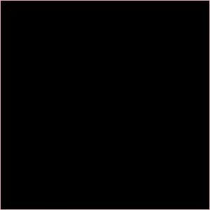 Logo for Denim Hunter